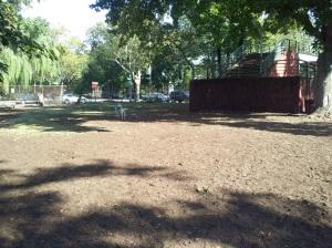 Zeke at dog park! We made it!